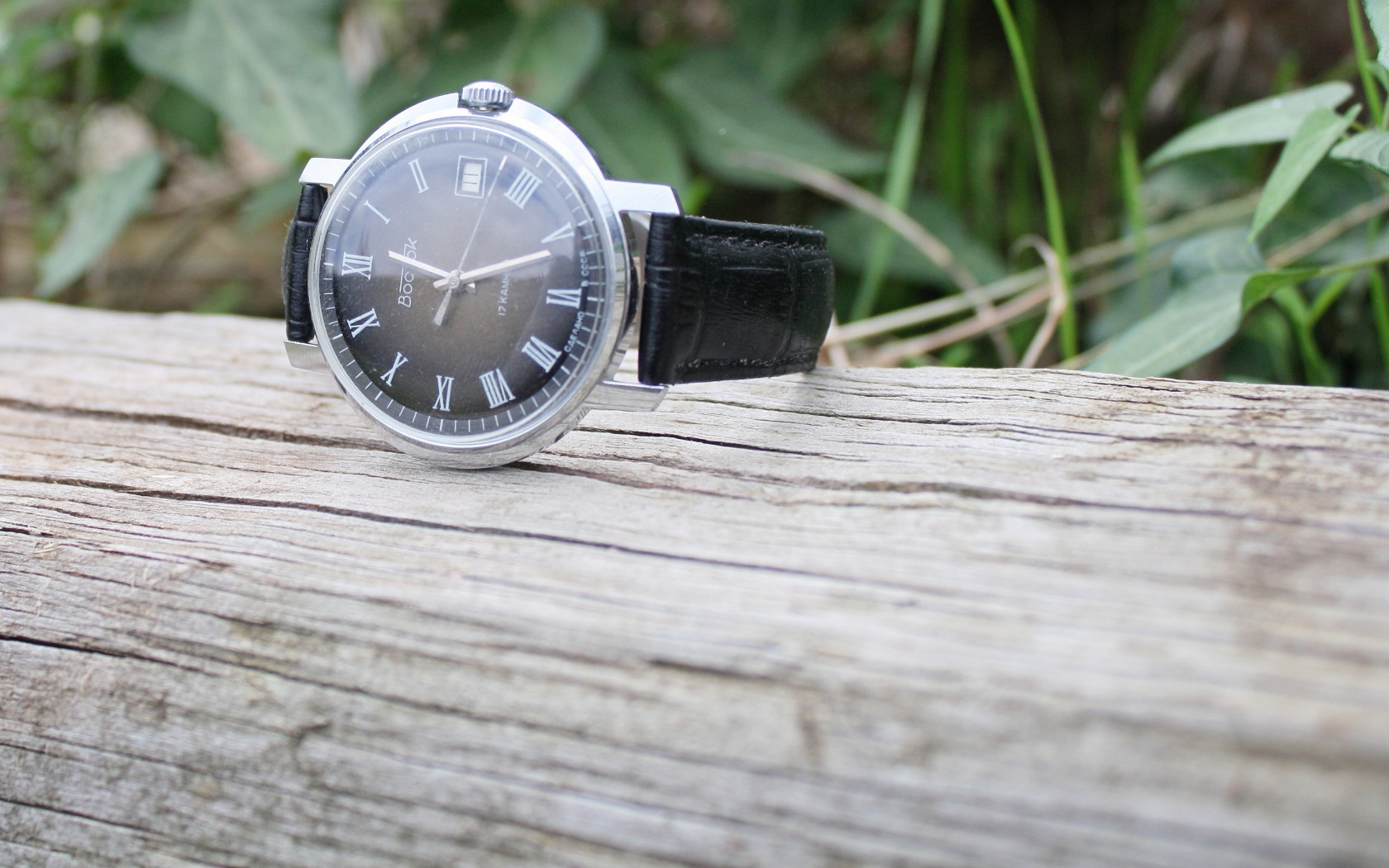 Vostok Civilian Watch